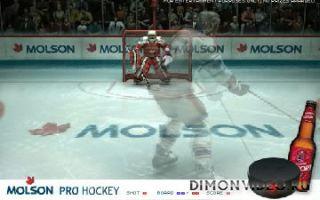 PRO Hockey 3D