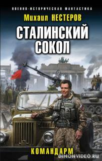 Сталинский сокол. Командарм - Михаил Нестеров