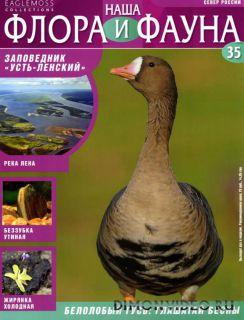 Наша флора и фауна №35 (2013)