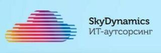 SkyDynamics - весь спектр IT услуг для бизнеса