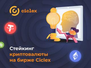 О Ciclex отзывы: возможности пассивного дохода