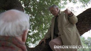Коломбо - (1-13 сезоны: 1-69 серии из 69)