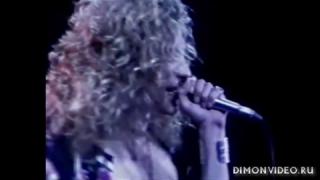 Led Zeppelin  -   Live  Concert