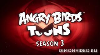 Злые птички / Angry Birds Toons - Сезон 3 полностью