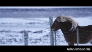 Tiesto & ZAXX ft. Olivera - Affliction