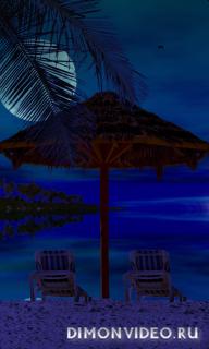 Private Beach Live Wallpaper